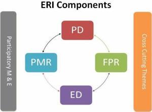 ERI components